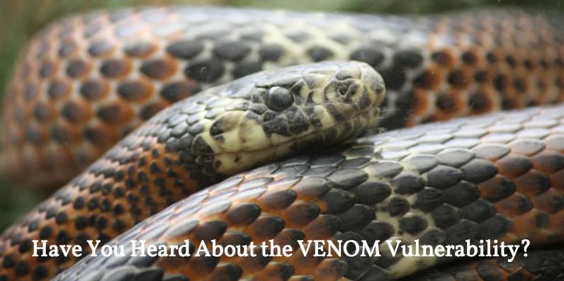 VENOM vulnerability image